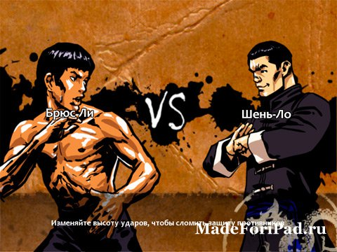 Bruce Lee Dragon Warrior