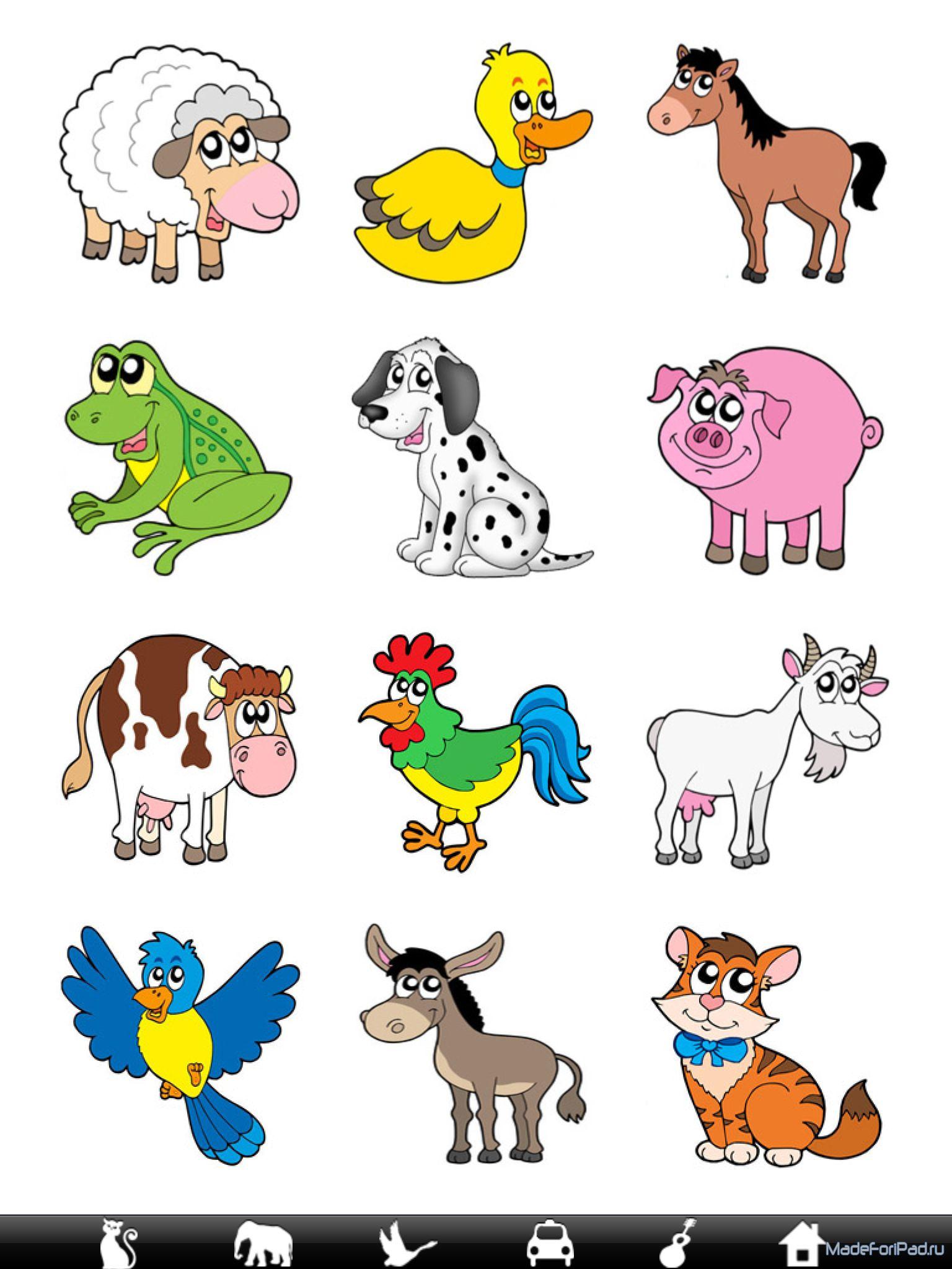 Животные картинки 3 года ребенку 3